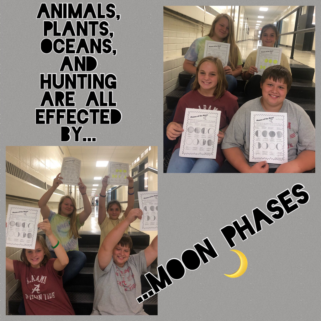 "Which PHASE of the moon is your favorite?  Mrs. Smith's sixth grade class can tell you all about them!  ""Cooperative Learning A+ Curriculum STEM Unit"""